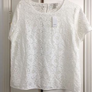 New beautiful lace shortsleeved top.